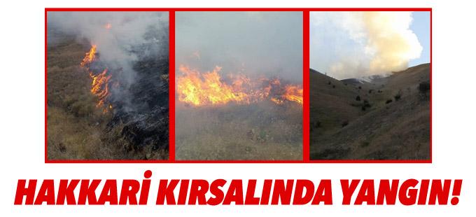 Hakkari kırsalında yangın