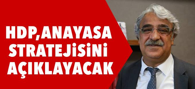 HDP Anayasa stratejisini yakında açıklayacak