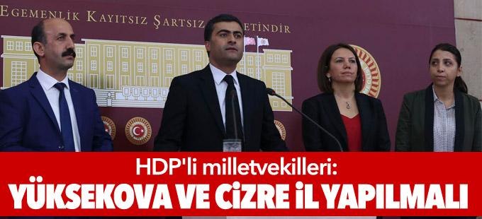 HDP'li milletvekilleri: Yüksekova ve Cizre il yapılmalı