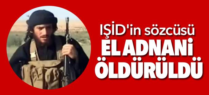 'IŞİD'in sözcüsü el Adnani öldürüldü'