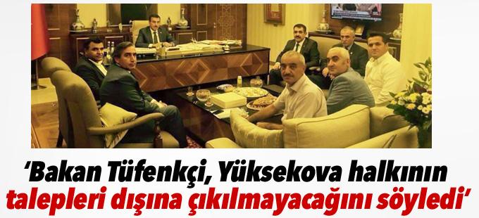 Sarı: Bakan Tüfenkçi, Yüksekova halkının talepleri dışına çıkılmayacağını söyledi