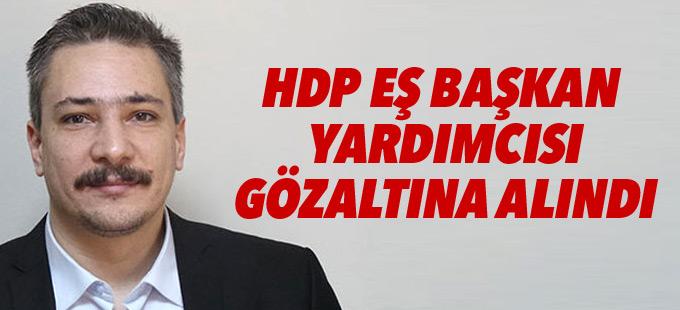 HDP Eş Başkan Yardımcısı Altınörs gözaltına alındı