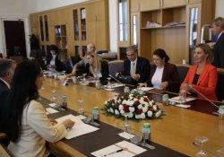 AB heyeti HDP'lilerle bir araya geldi