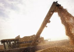 Bayer, Monsanto'yu 66 milyar dolara satın aldı