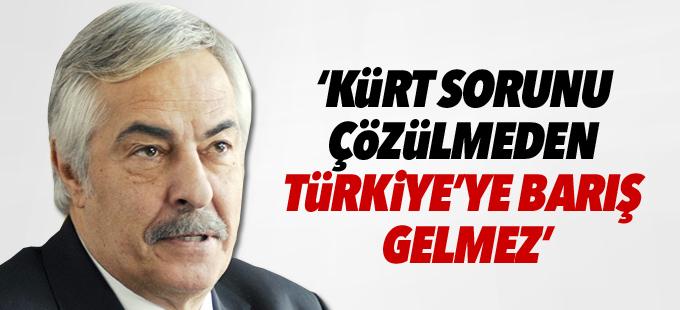 Rutkay Aziz: Kürt sorunu çözülmeden Türkiye'ye barış gelmez