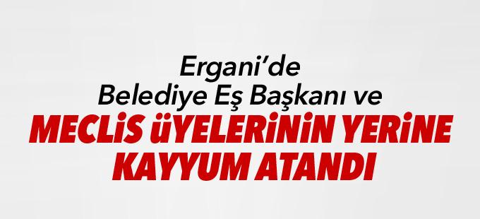 Ergani'de Belediye Eş Başkanı ve meclis üyelerinin yerine kayyum atandı