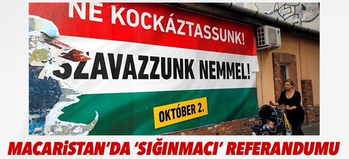 Macaristan'da 'sığınmacı kotası' referandumu