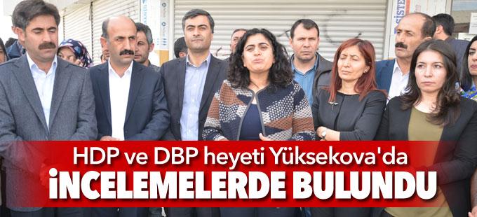 HDP ve DBP heyeti Yüksekova'da incelemelerde bulundu