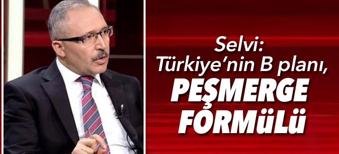 Selvi: Türkiye'nin B planı, Peşmerge formülü