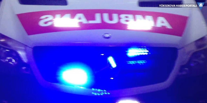 Van'da kavga: 7 yaralı