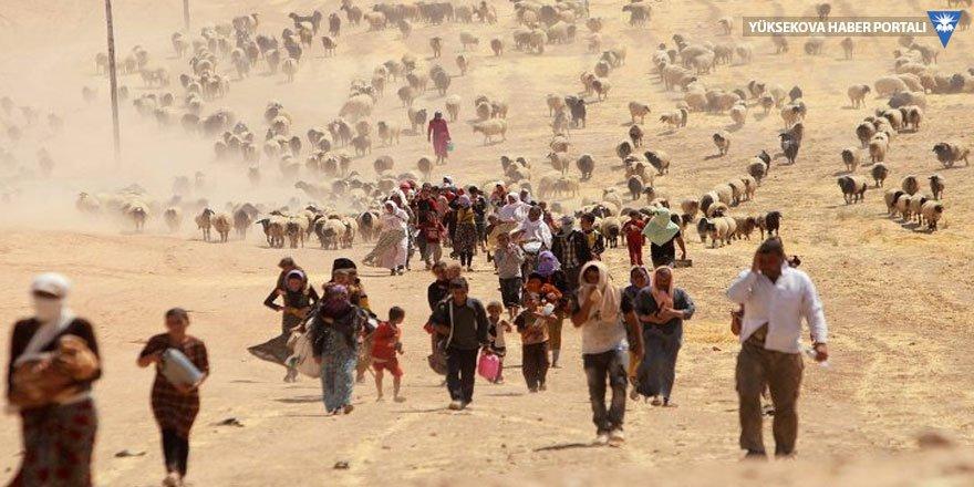 'IŞİD'ciler bir anneye çocuğunu yedirdi'