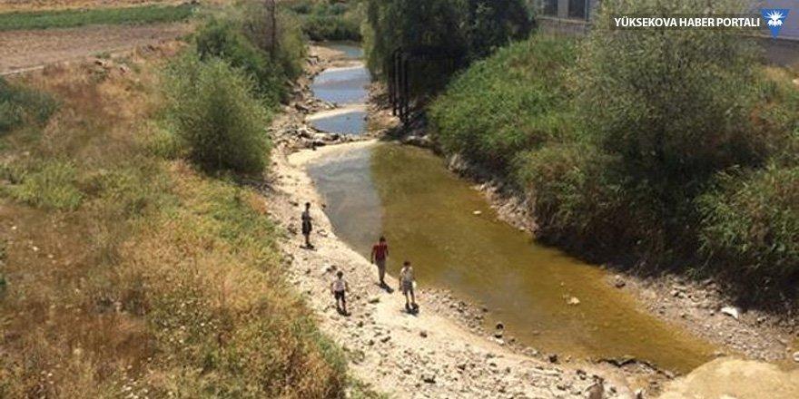 Sakarya Nehri 26 gündür kupkuru!