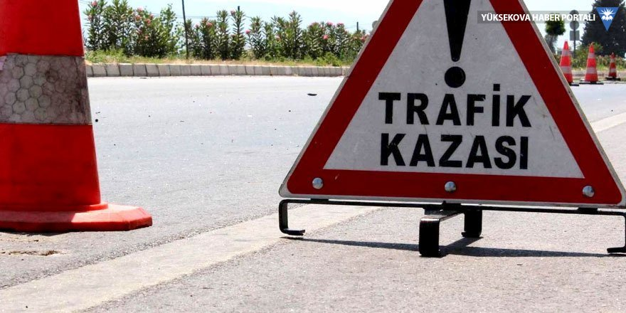 Eleşkirt'te trafik kazası: 1 ölü, 1 yaralı