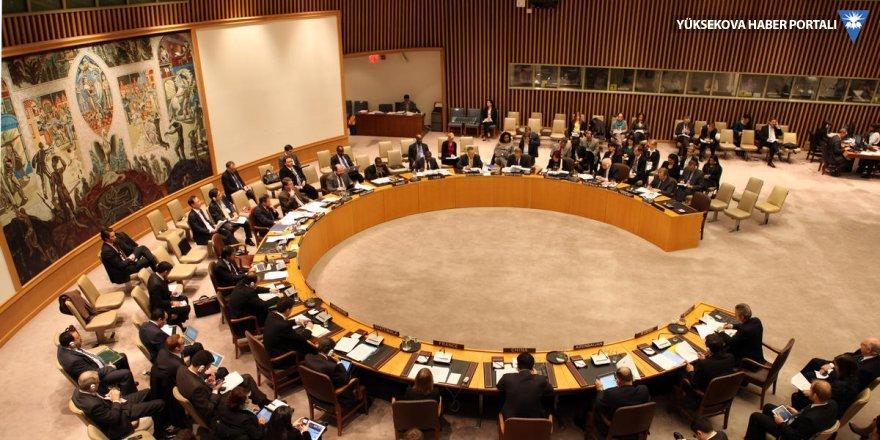 AGİT ve BM'den Türkiye bildirisi