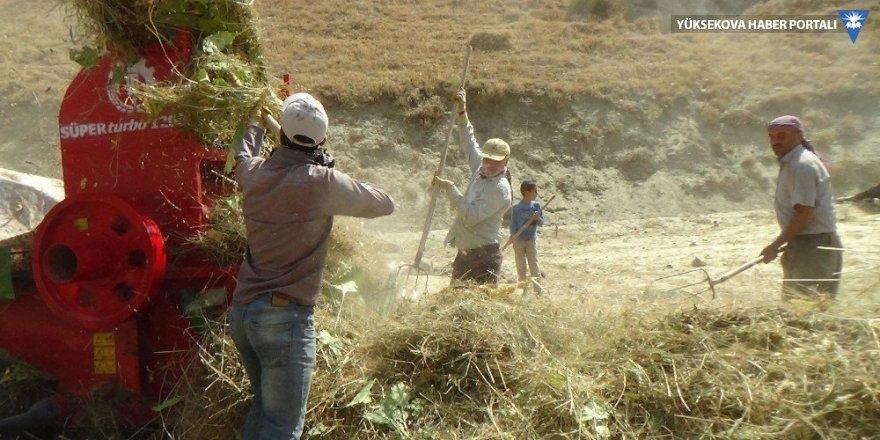 Hakkarili çiftçilerin patoz mesaisi başladı