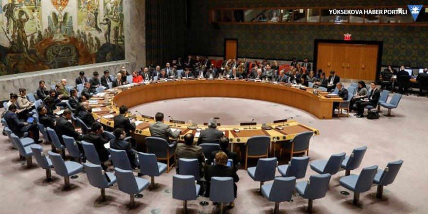 BM Güvenlik Konseyi, Suriye'de bir ay 'insani ateşkes' kararı aldı