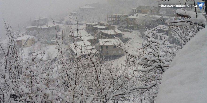 Hakkari'de 14  köy ile 42 mezra yolu ulaşıma kapandı
