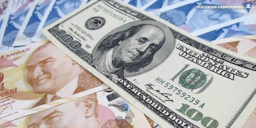 Döviz hesapları 1.3 milyar dolar arttı