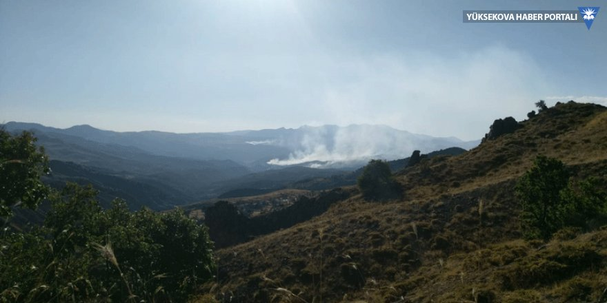 Dersim'de süren yangına müdahale