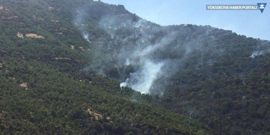 Beytüşşebap'ta orman yangını
