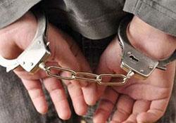 Dersim'de 3 kişi gözaltına alındı
