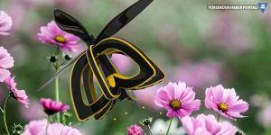 Black Mirror'un robot arıları gerçek oluyor