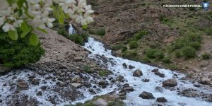 Dünyanın tatlı su kaynakları tükeniyor