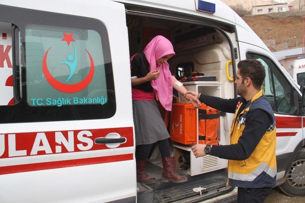 Şemdinli'de 176 öğrenci hastanelik oldu